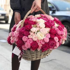 51 кустовая пионовидная роза R275