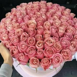 Композиция 101 кремовая роза в коробке R403